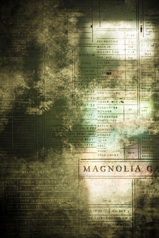 7x7_magnolia-0141.jpg