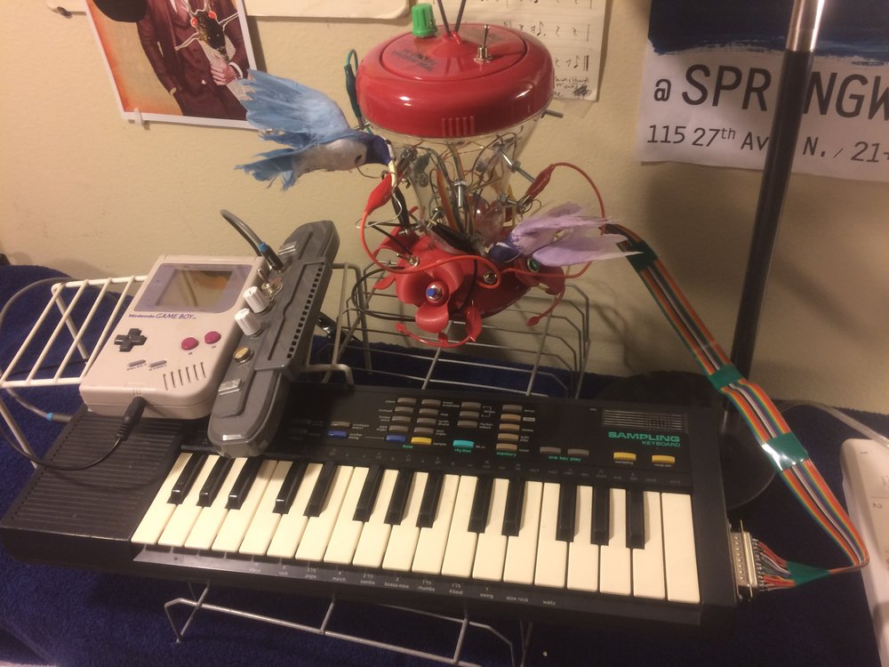 Gameboy + SK-1 With Hummingbird Control