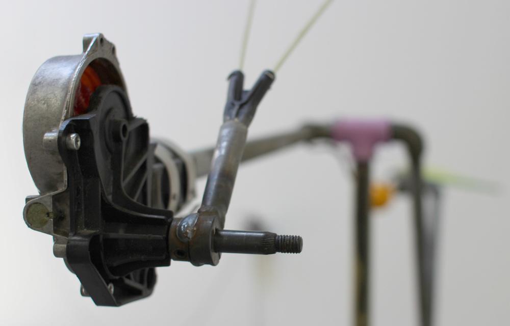 Cassowary.MotorDetail.jpg