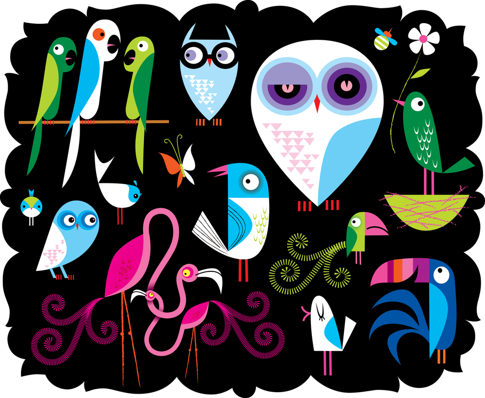 Birdspread.jpg