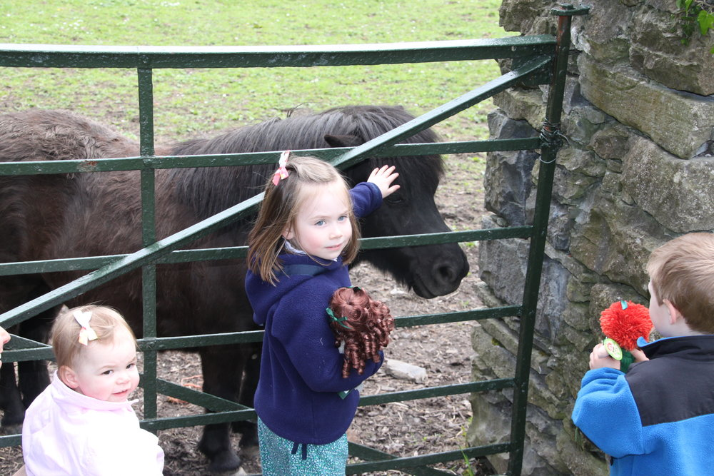 saying-hi-to-animals-at-bunratty-castle.jpg