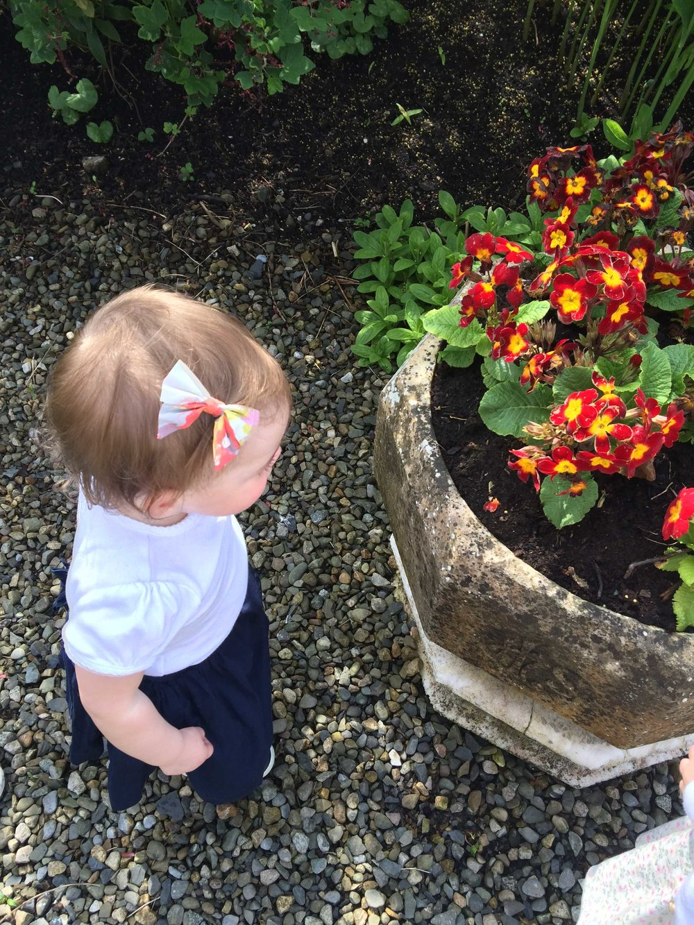 smelling-the-flowers-in-garden-in-ireland.jpg