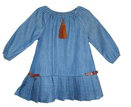 Lindsey-Berns-Denim-Pleated-Dress-70-.png
