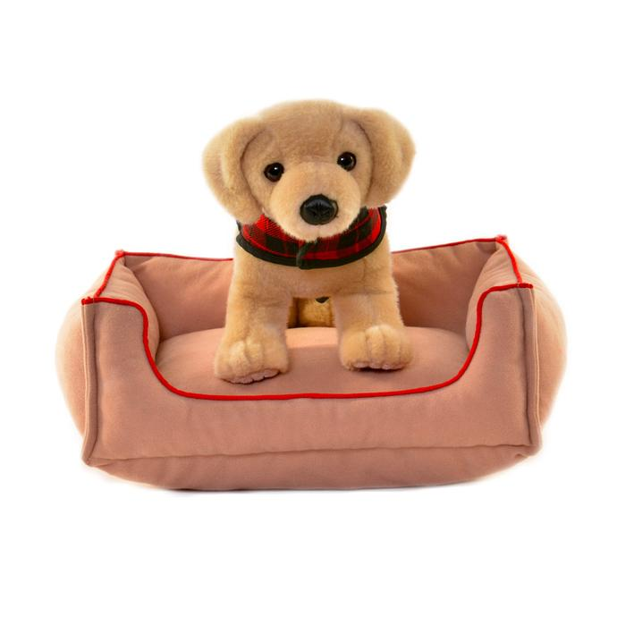 Play Dog and Dog Bed, Dog with Cardboard Dog House, $25-, Dog Bed, $20-.jpg