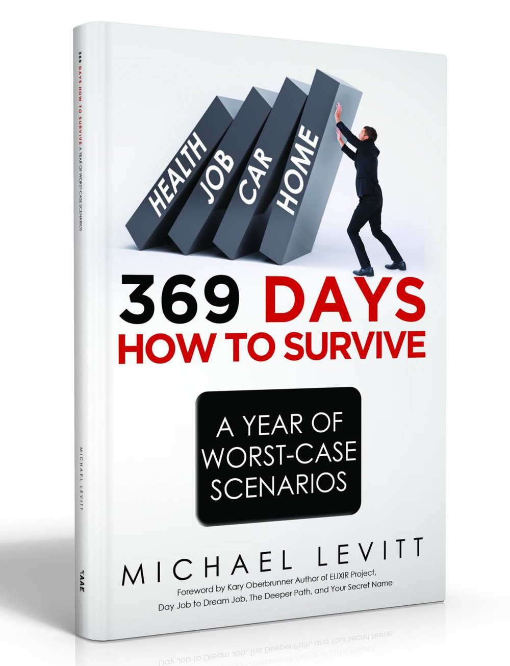 Can you lose EVERYTHING, and come out of that experience better?  You Can.  Order 369 Days Today.