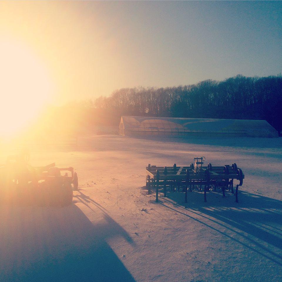 Winter on White Gate Farm
