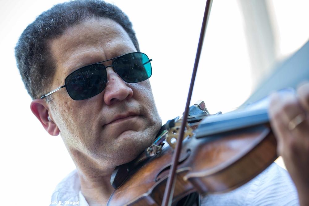Violin Up Close