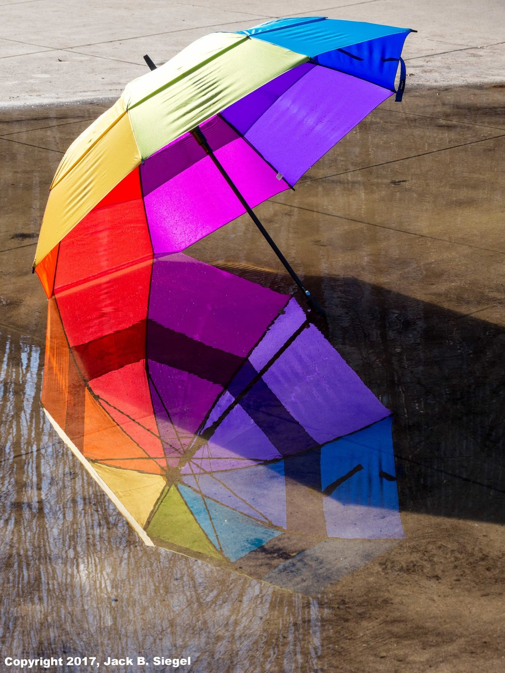 Rainbow Harmony