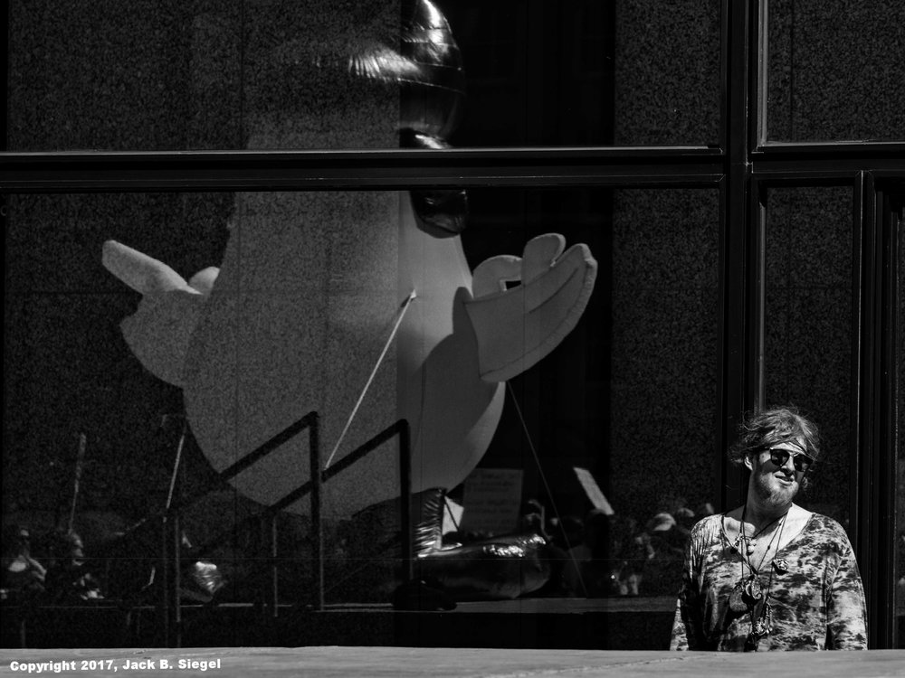 Reflected Chicken and Man