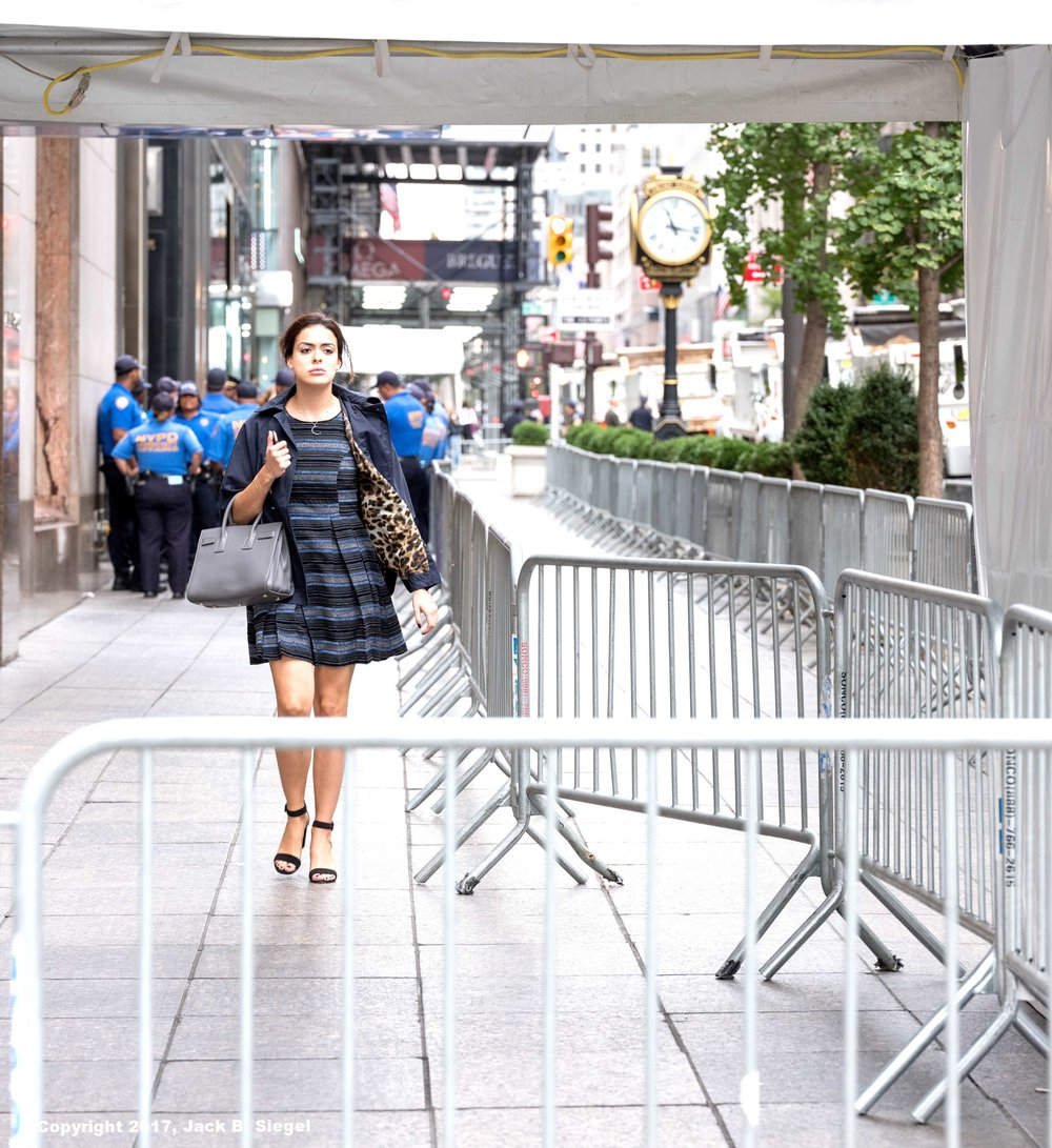 _DSF1045_Copyright_sRGB_Relative_Glamour Leaves Trump Tower.jpg