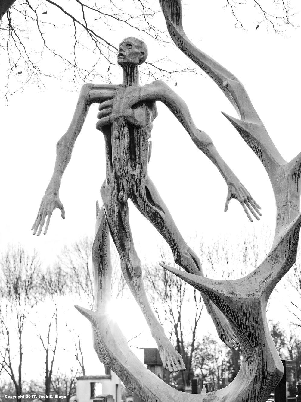 _DSF5618_Copyright_sRGB__Relative_Hanging Body.jpg