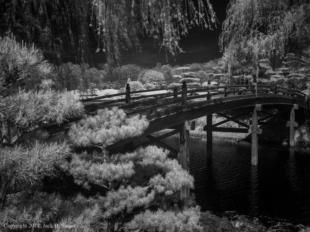 P1010287PS__Copyright_Bridge to the Japanese Garden.jpg