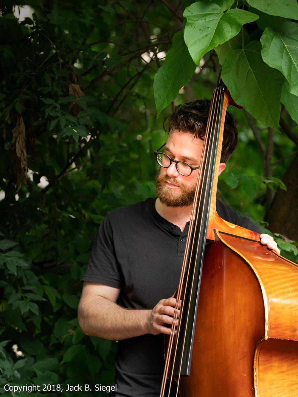 _DS25751PS__Copyright 2018 jpeg_Bass Player in the Trees.jpg