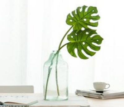 #1 The Monstera Plant - This plant will be the new Fig Leaf for 2018. Along with other tropical house plants. Look for real being replaced with fake.  But if your like me who has a black thumb, I might just be sticking with fake.photo cred: Amazon.com