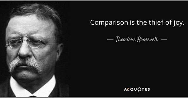 I think this quote is able to summarize how I feel about comparison. The more I focus my attention to what others have and how others live their life, the more time I spend not appreciating the life I live. There is a difference between being inspired by others and obtaining something you want in a healthy manner compared to being envious of others and feeling like you are not good enough or the life you live is not as important. - Anna from Your Truth Foundation ❤️💜