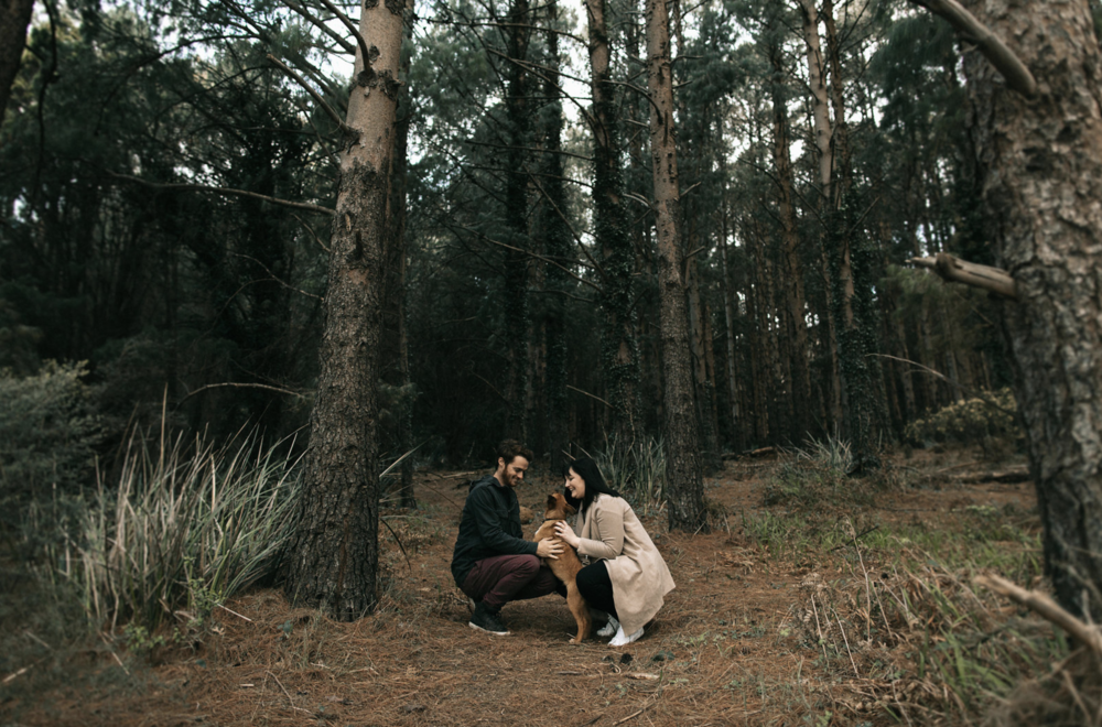 Ashleigh Haase Yarra Valley based Wedding Photographer