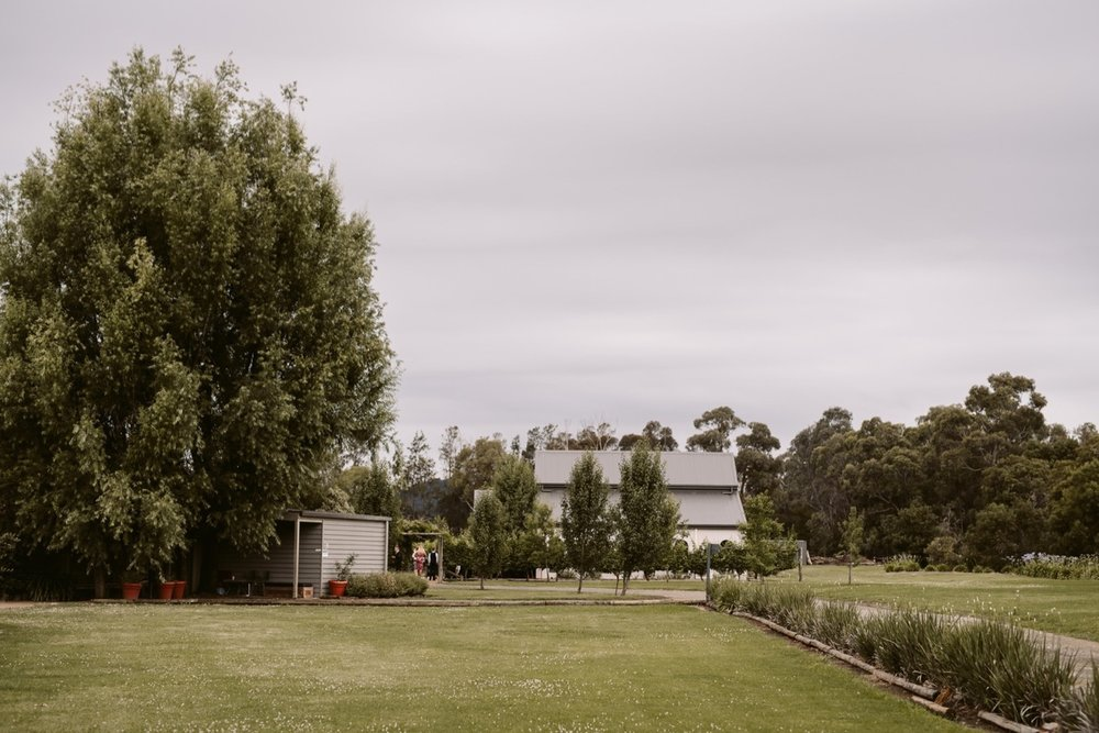 Immerse Yarra Valley Winery Wedding Photography41.jpg
