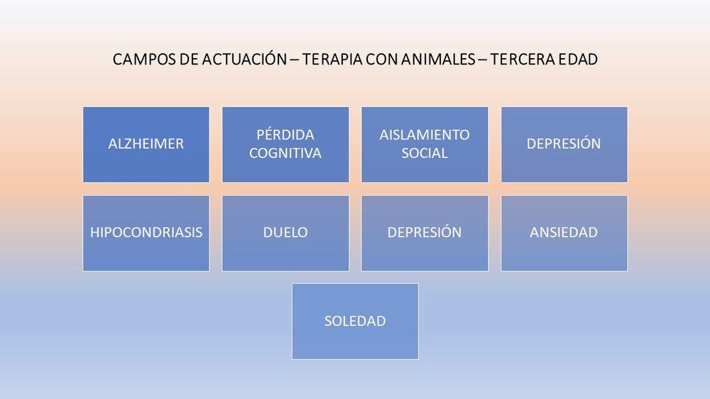 CAMPOS ACTUACIÓN TERAPIA ANCIANOSCON PERROS.jpg