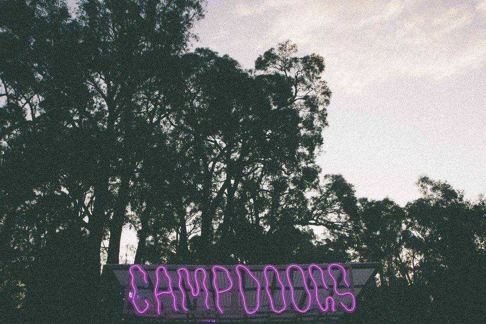 Camp Doogs 2015 E.jpg