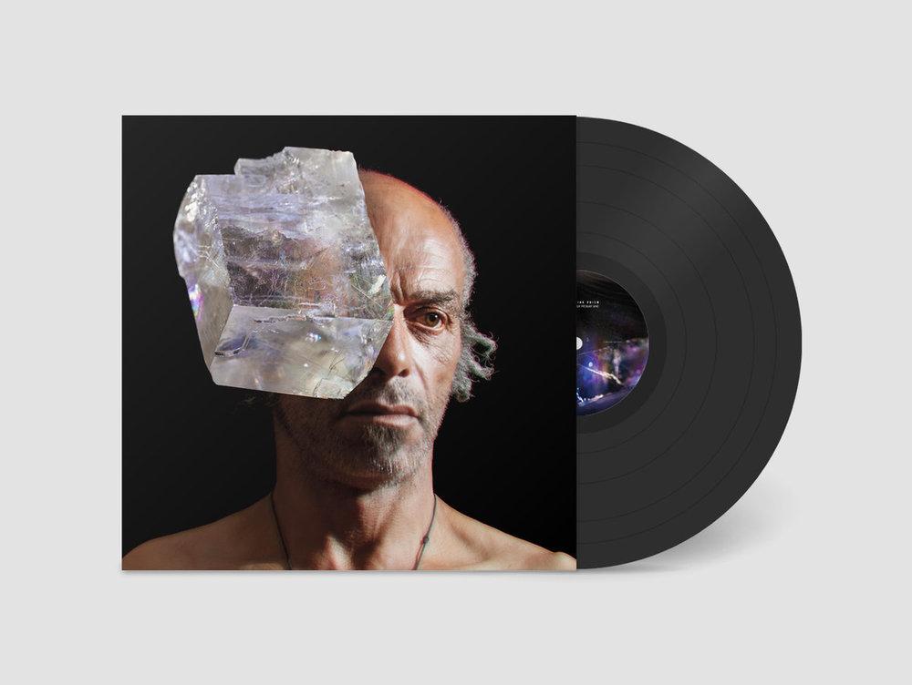 Doublethink Prism Vinyl.jpg