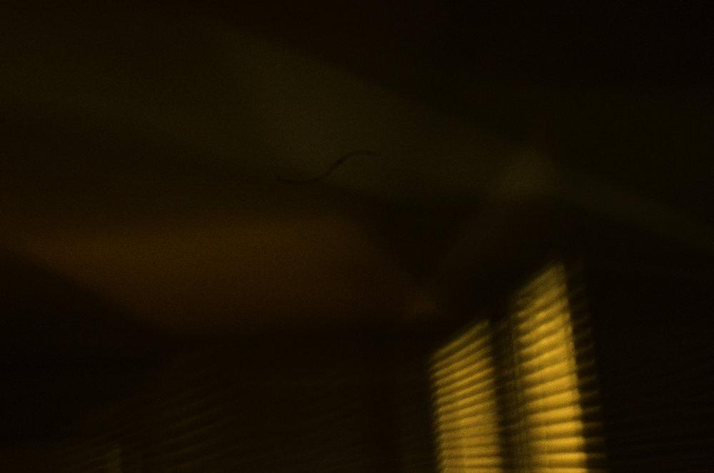 Strange Light, Howe St. I (2017)