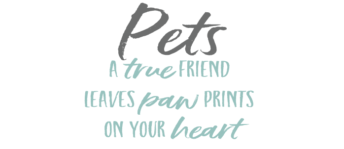 Pets. A true friend leaves paw prints on your heart.