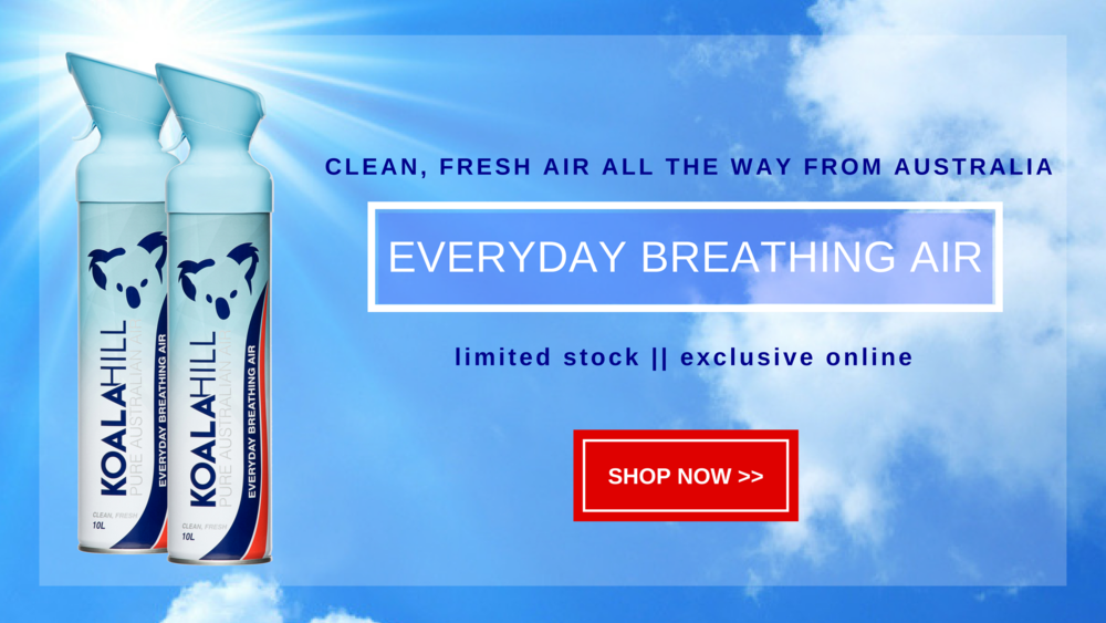 Koala Hill Everyday Air product banner