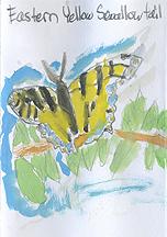 Nature Journaling -