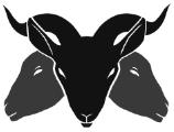 Logo thumbnail.png