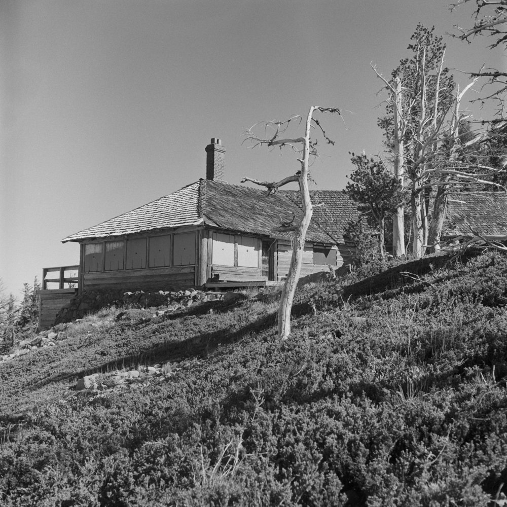Cloud Cap Inn sits shuttered, flanked by trees killed by the 2008 Gnarl Ridge Burn.