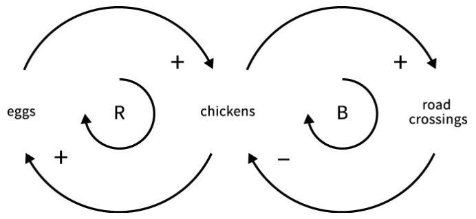 feedback-loops-chicken-egg-roadcrossing.JPG