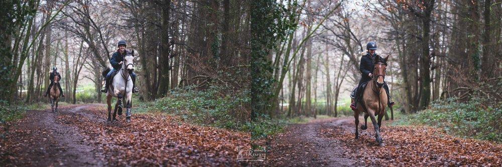 forest walk_0006.jpg