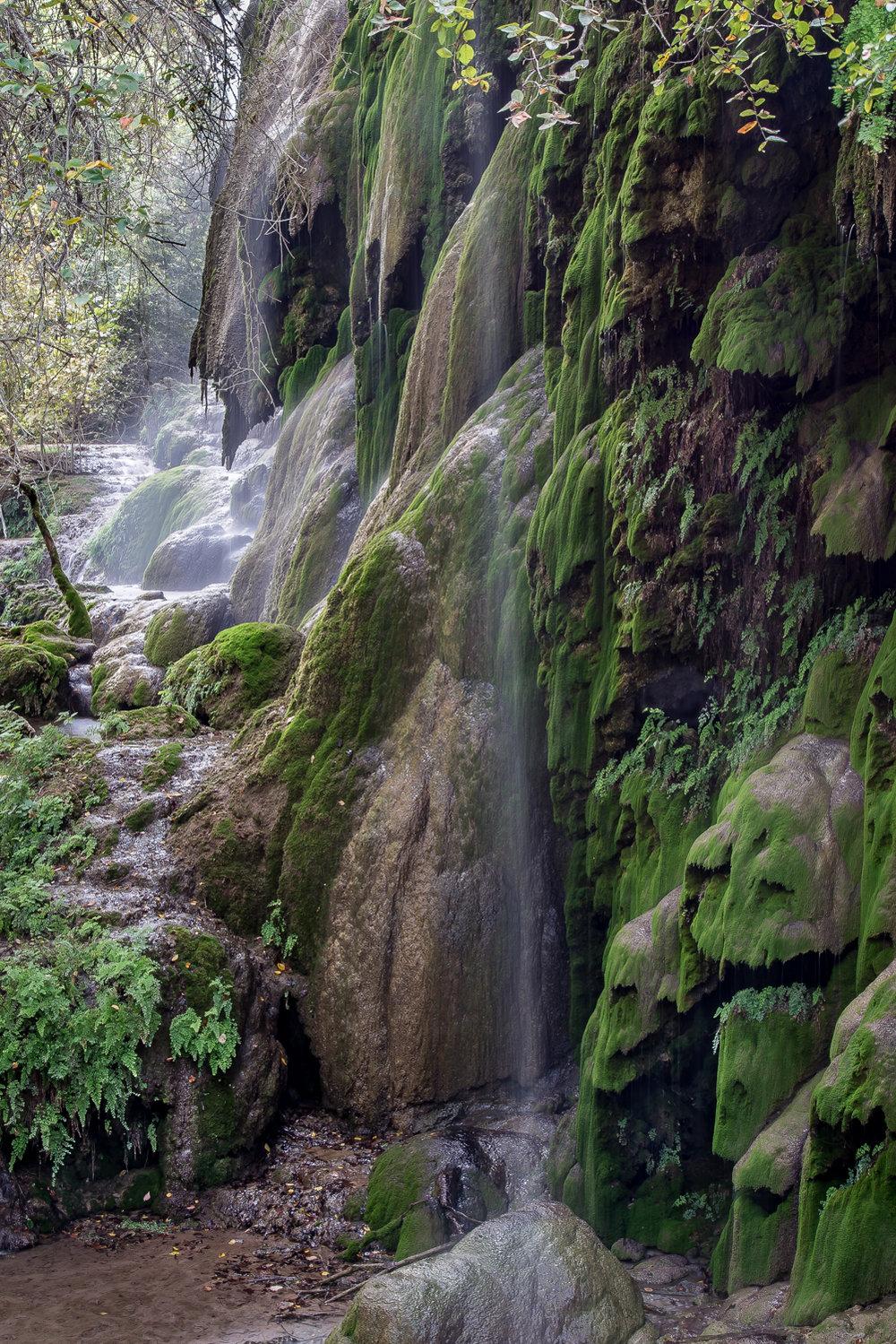 Gorman Falls (1 of 1)-2.jpg