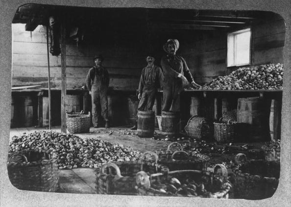 Interior view of an oyster barge on the waterfront in New York City, circa 1890. Workers are shown with oysters strewn across the worktops and floor. Image credit: Archive Photos/Getty Images