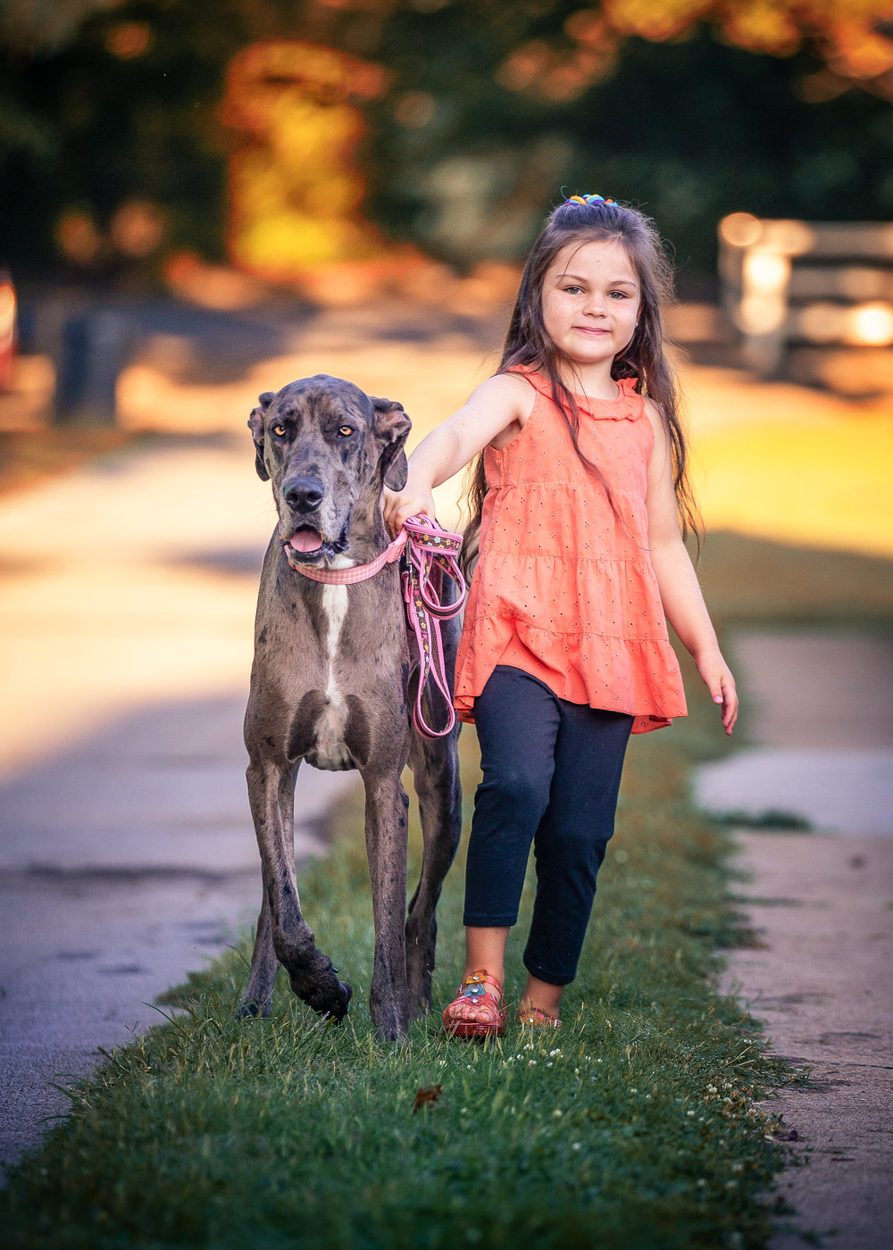 Olivia (6) enjoys a walk with Lucy (2) at Allandale in Kingsport, TN - See more of their pictures at  https://tinyurl.com/yd3fp856