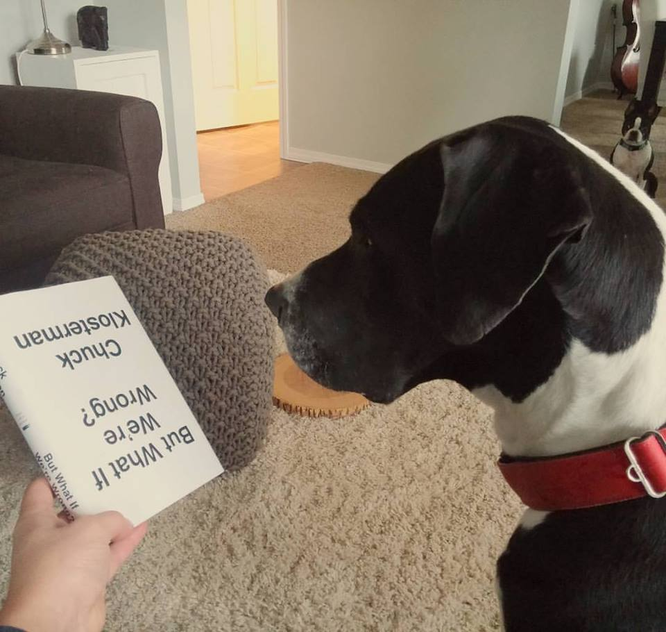 LOCAL DOG PRETENDS IT TOTALLY CAN READ | #DogsOfKimberley
