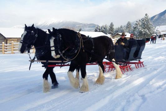 Sunday, December 2nd - Sundays in December | December 2, 9th, & 16th, weather permitting, come out to Fort Steele for a horse drawn sleigh/wagon ride (11am-3pm), or strap on your skates at our outdoor rink! Skating and sleighs are weather dependent, and wagons will run if there's not enough snow for the sleighs!Warm up by the fires around town, or visit our cozy cafe and enjoy a wholesome lunch!* Hosted by Fort Steele Heritage Town