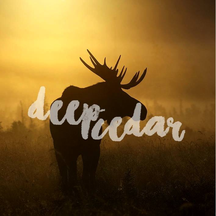 Friday, DECember 14th - Deep Cedar Live Concert | Deep Cedar will be performing live on December 14 at Paper and Cup! Doors at 7:30pm, show starts at 8pm. Tickets are $15 available online or in store. Beer, wine and snacks available for purchase. 19+* Hosted by Deep Cedar and Paper and Cup