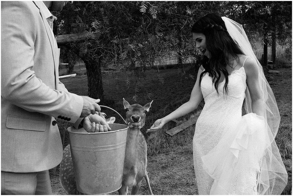 gum gully farm wedding   059.jpg
