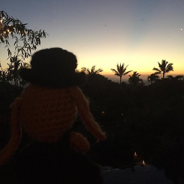 The show is done.  The evening draws to a close.  And a magic rabbit takes a moment to enjoy a Maui sunset. #thurstontherabbit