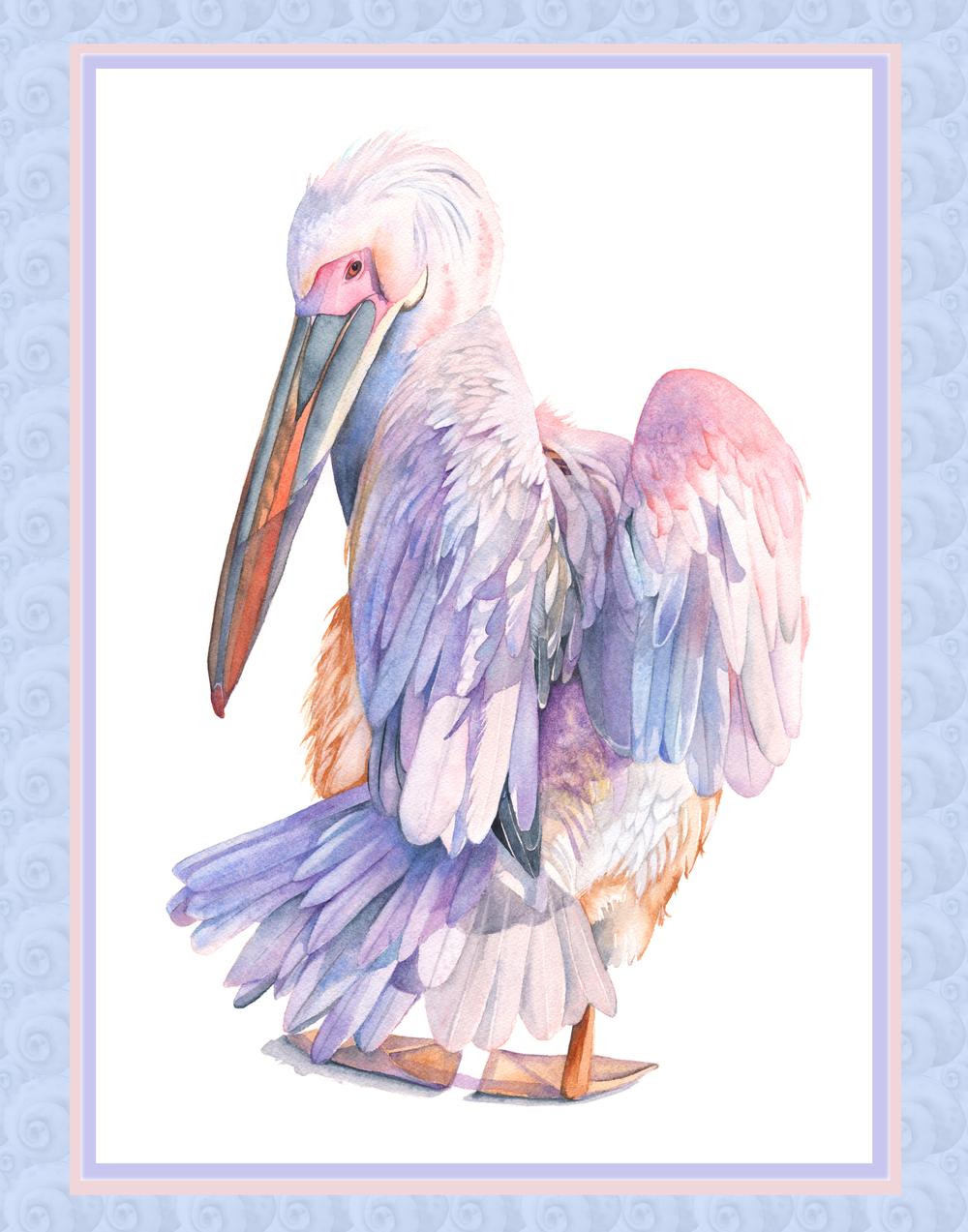 Pelican on fsnail shell pattern.jpg