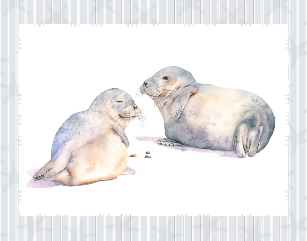 Seals on stripe pattern.jpg