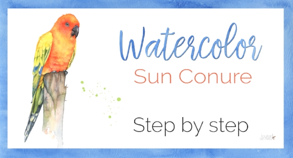 sun conure step by step.jpg