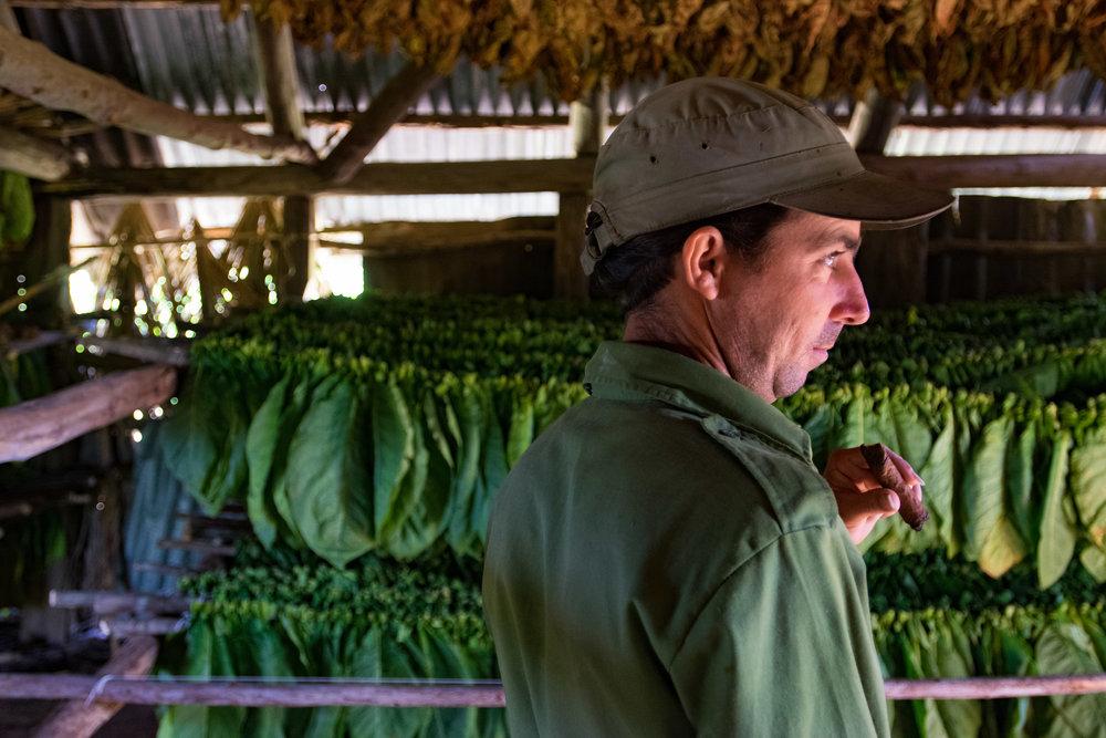 Cuba Selects-24.jpg
