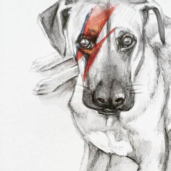 """Esta genial Susana !!! Me encanta.""  Dog portrait"