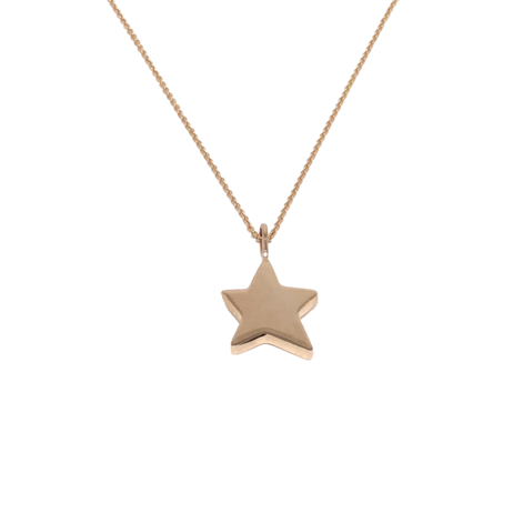 Star Pendant  Photo: Robyn Gross
