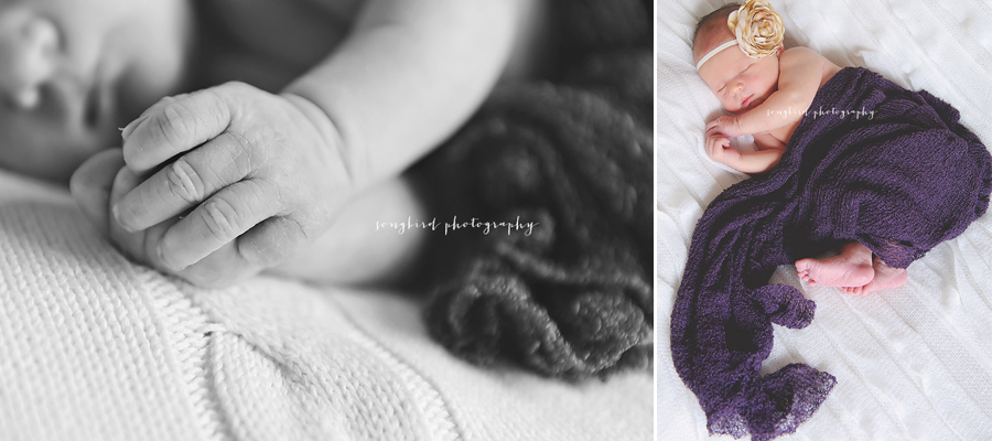 Milwaukee Family Newborn Photographer
