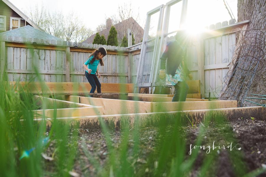 garden-3978