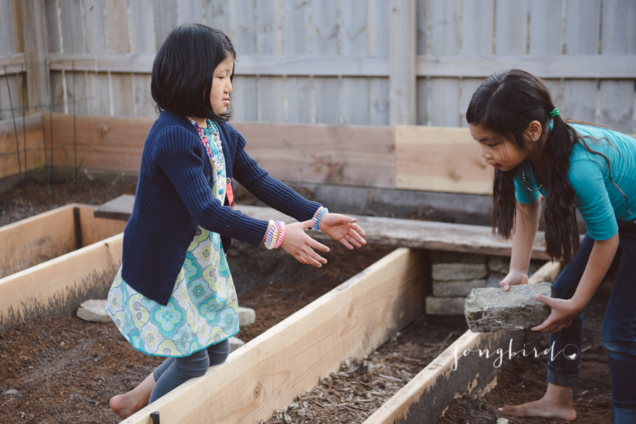 garden-4052