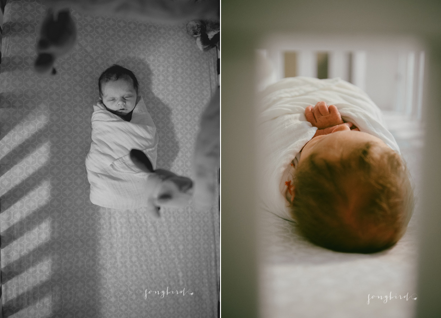 milwaukee newborn photography